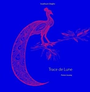 Trace-de-Lune-Lulu2